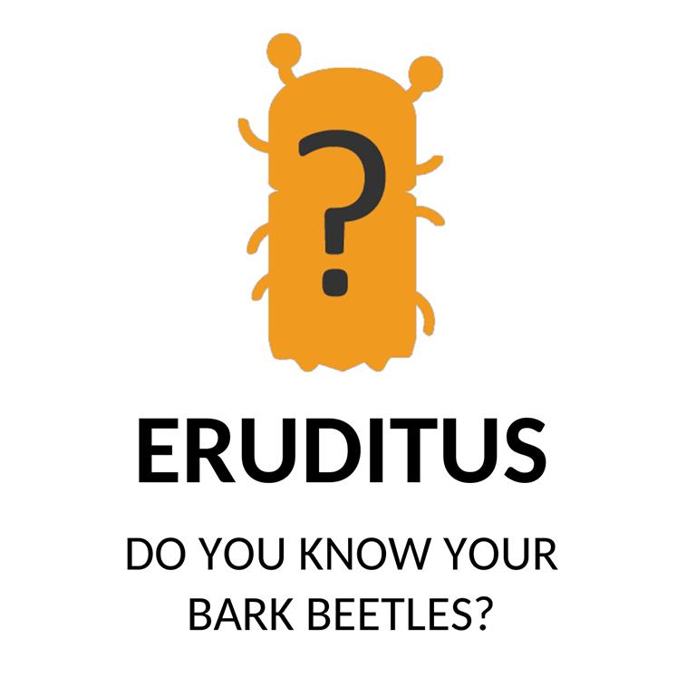 Eruditus768
